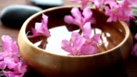 flowers in bowl video