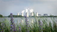 flowers in front of a power plant - panorama video
