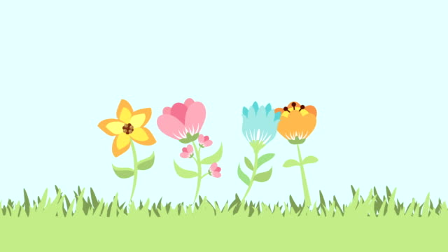 flowers, Video animation video