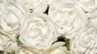 flowers-white roses video