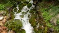 Flowing creek background video