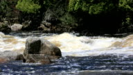 Flowing River in Summer, Quebec, Canada video