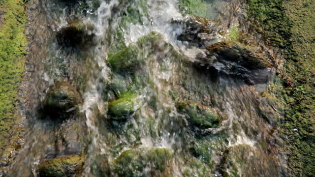 Flowing water of the stream video