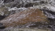SLOW MOTION: Flowing Water video