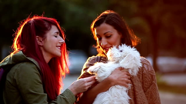 Fluffy Dog Blessed In Between Pretty Girls video