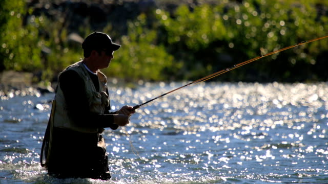 Fly Fisherman Casting Line video