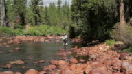 Fly Fisherman Casting Up River video