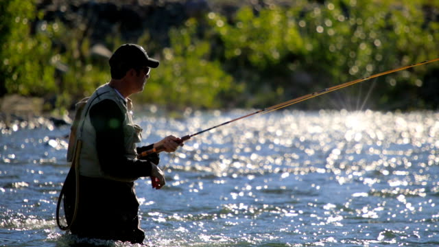 Fly Fisherman in River, Close-up video