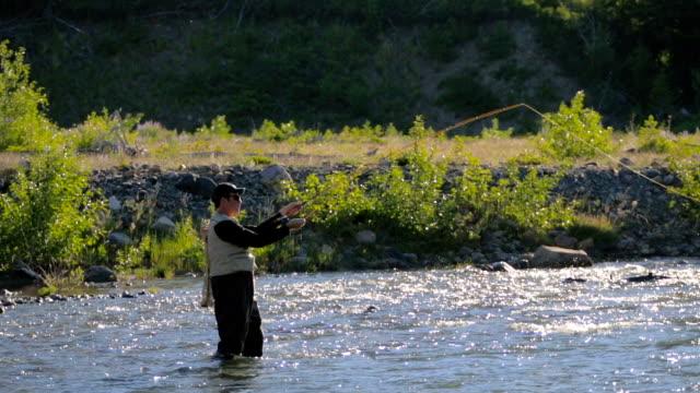Fly Fisherman in River video