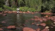 Fly Fisherman River Casting Closeup video