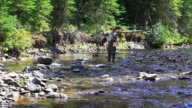 Fly fishing in forest stream video