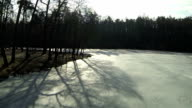 fly in frozen lake and  wood in  winter. Aerial video