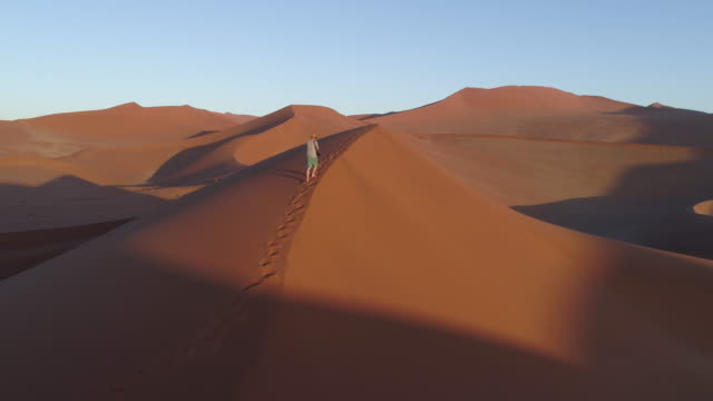 Fly over view of male tourist taking walking up one of the vast sand dunes in the Namib desert video