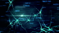 Fly Through a Digital Brain video