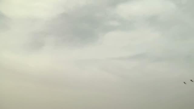 F-15 flybys in desert. video