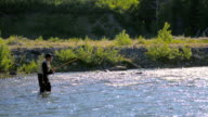 Fly-Fishing in River video