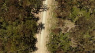 AERIAL: Flying above empty dusty dried up country road in beautiful forest video