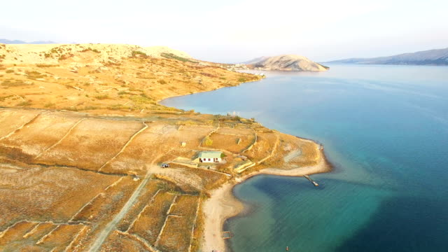 Flying above isolated house in yellow grass of Pag island, Croatia video