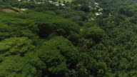 4K AERIAL CLOSE UP: Flying above lush tropical jungle forest with palm trees and acacia trees towards small local oceanfront fisherman village overlooking big beautiful blue lagoon and ocean reef on beautiful exotic island video