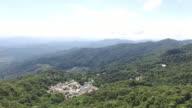 Flying above rainforest video