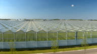 AERIAL: Flying above roofs of modern glass hothouses cultivating organic plants video