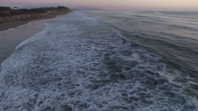 Flying Along Beach At Sunset video