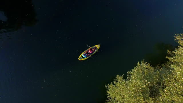 AERIAL: Flying around sporty couple kayaking along the beautiful calm river on a sunny summer day video