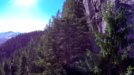 AERIAL: flying bove tree tops, pass the waterfall video