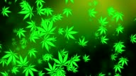 Flying cannabis leaves on green video