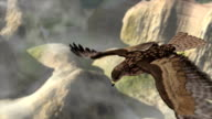 flying eagle with landscape video