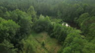 AERIAL: Flying high above and around beautiful lakes in the middle of lush green forest, jungle wilderness on a beautiful sunny day in spring video