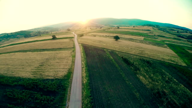 Flying over Cultivated Land video
