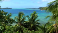 AERIAL: Flying over exotic palm trees towards crystal clear blue lagoon on beautiful tropical island in sunny summer video