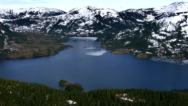 Flying over forest and lake in Alaska video