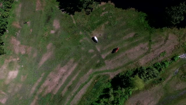 Flying Over The Horse on The Quadrocopters video