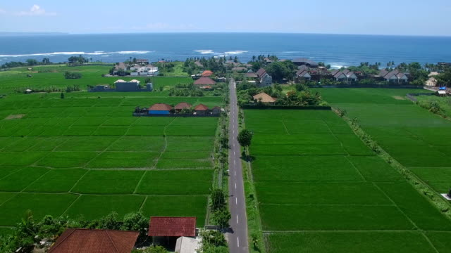 Flying over village road through rice terrace fields towards beach and ocean. Bali, Indonesia video