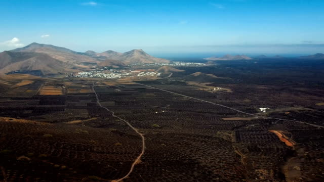 Flying over wine valley of La Geria, Lanzarote, Canary islands, Spain video