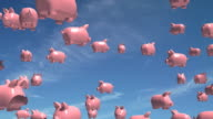 Flying Pigs video