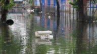 Foam waste floating on floodwater. video
