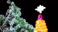 focus panning: Christmas trees at night video