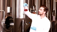 Focused scientist looking beaker with beer video