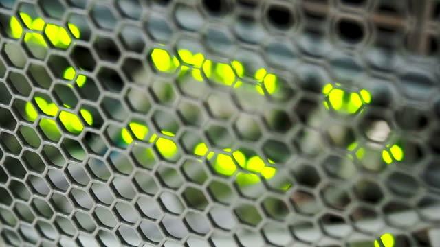 Focusing network switch flashing video