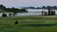 Fog - sunrise video