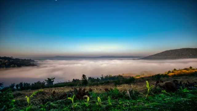 Fogs rolling over the hills in early morning video