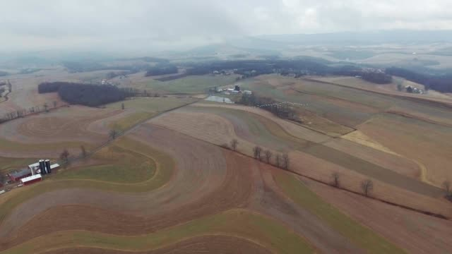 Following birds fly over Farmland on a cloudy day video