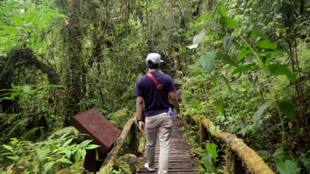 following to Thai hipster young man walking in long wooden bridge video