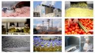 Food Industry Multiscreen video