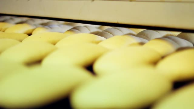 Food processing plant. White bread production process. Bread factory bakery video