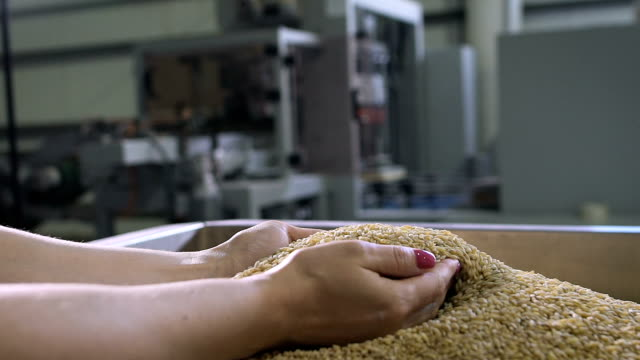 Food production. Woman manager assesses the quality of raw materials video
