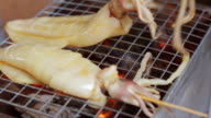 HD Footage close up of grilled squid on grill video